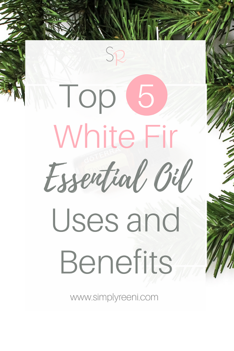 There are so many great ways to use essential oils. They have so many different therapeutic benefits that they offer! Here are the top 7 White Fir essential oil uses and benefits. Click to read now or pin for later. // www.simplyreeni.com